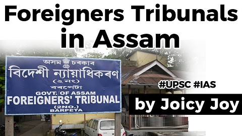 Foreigners Tribunals in Assam, Amnesty International allegations against FTs in Assam explained